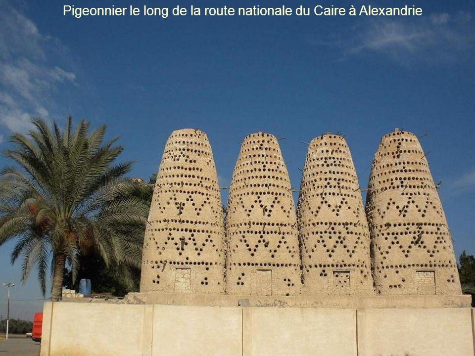 Citadelle médiévale Qaitbay Alexandrie Égypte