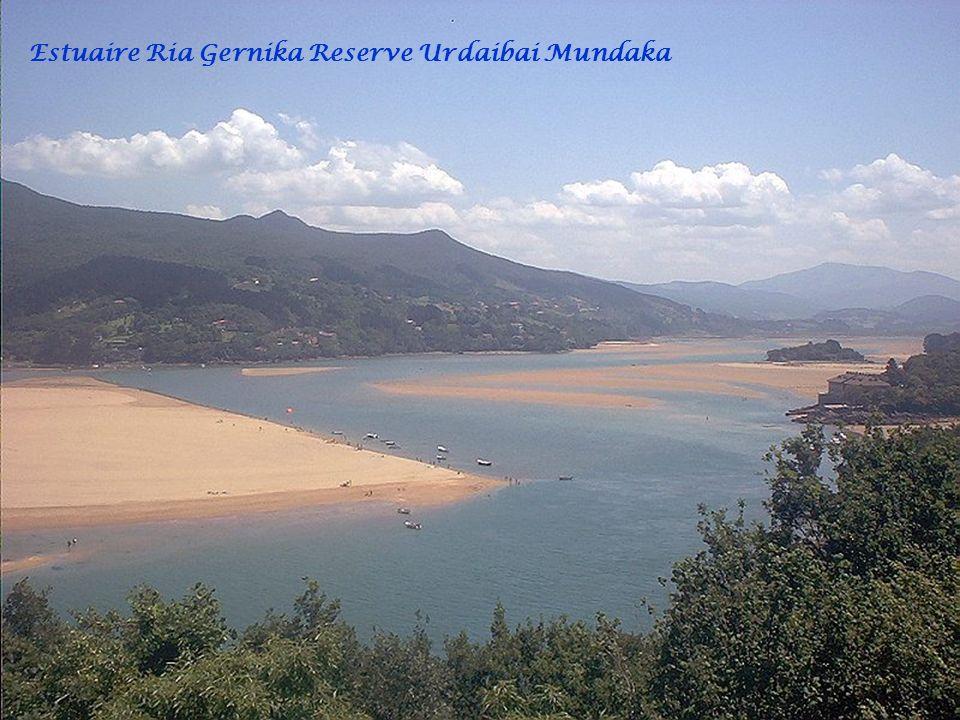 Port Mundaka île dIzaro