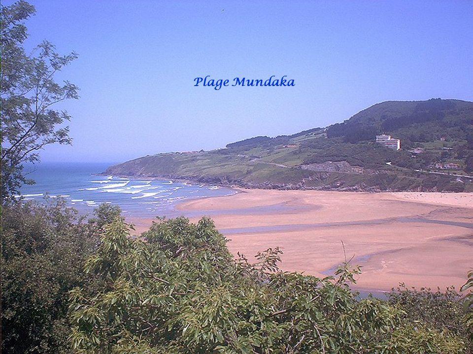 Estuaire Ria Gernika Reserve Urdaibai Mundaka