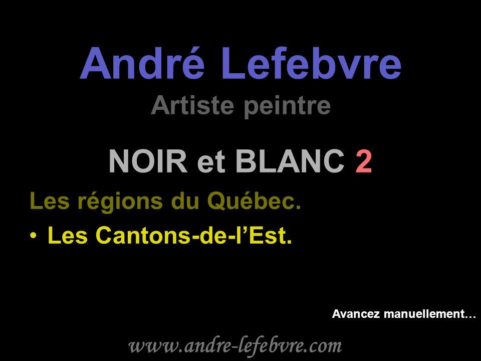 André Lefebvre Artiste peintre NOIR et BLANC 2 Les régions du Québec.