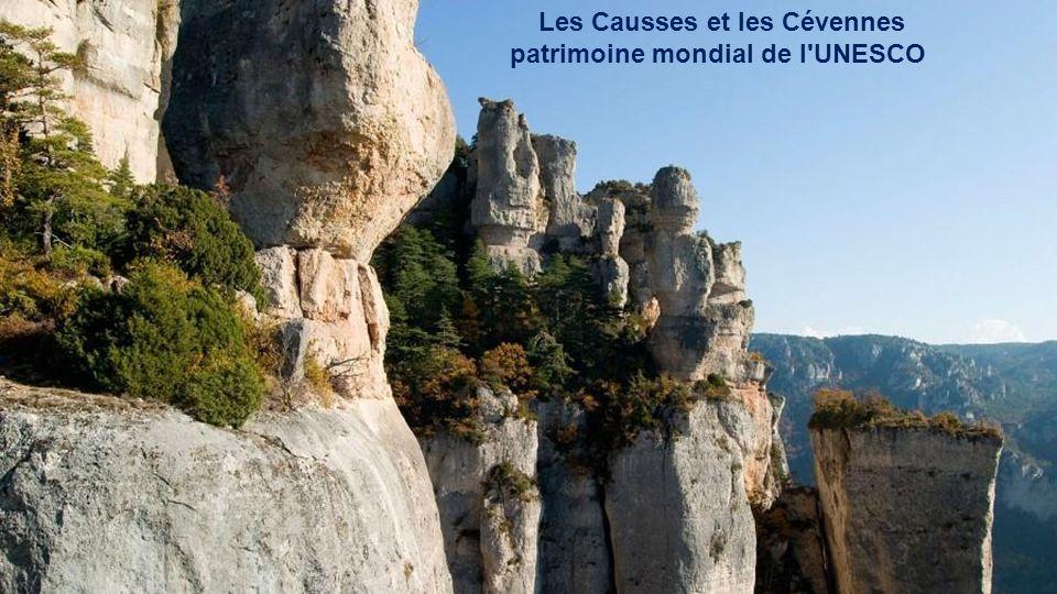 Les Causses et les Cévennes patrimoine mondial de l UNESCO