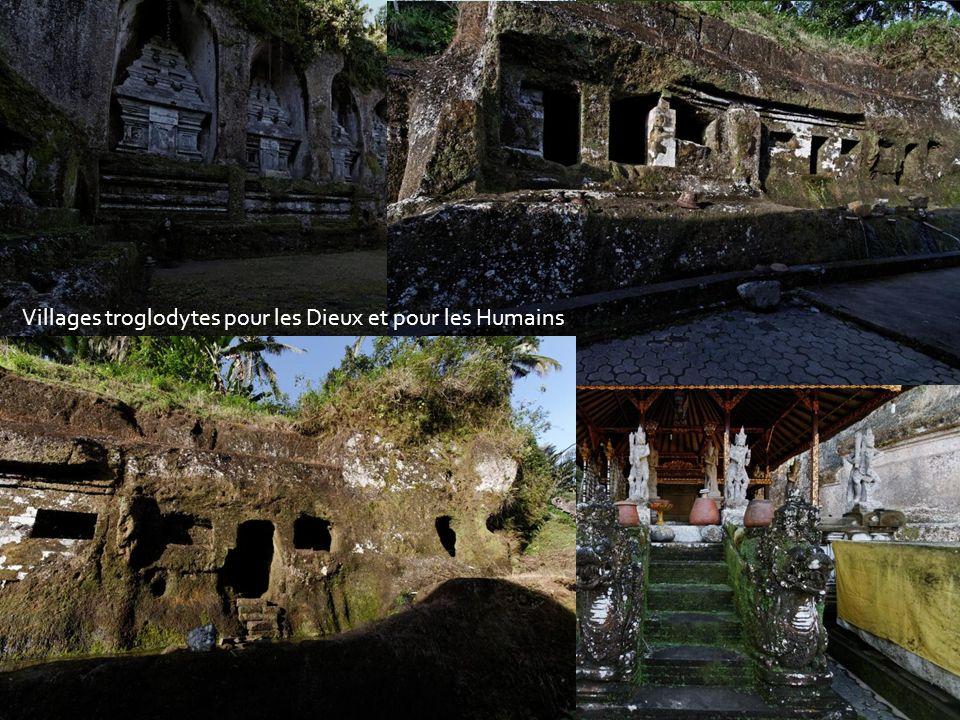 Descente vers les Sources SacréesAu travers des rizières en terrasses Au son du torrent sacré Lieu de purification et de culte