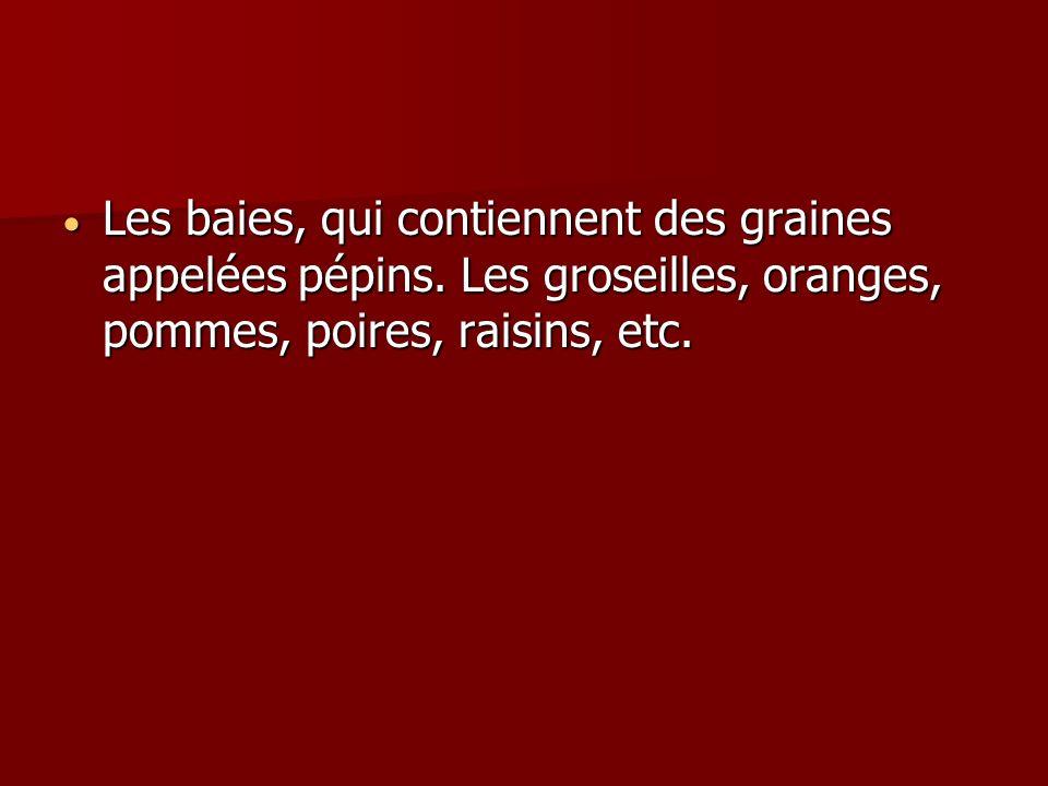 Les baies, qui contiennent des graines appelées pépins. Les groseilles, oranges, pommes, poires, raisins, etc. Les baies, qui contiennent des graines