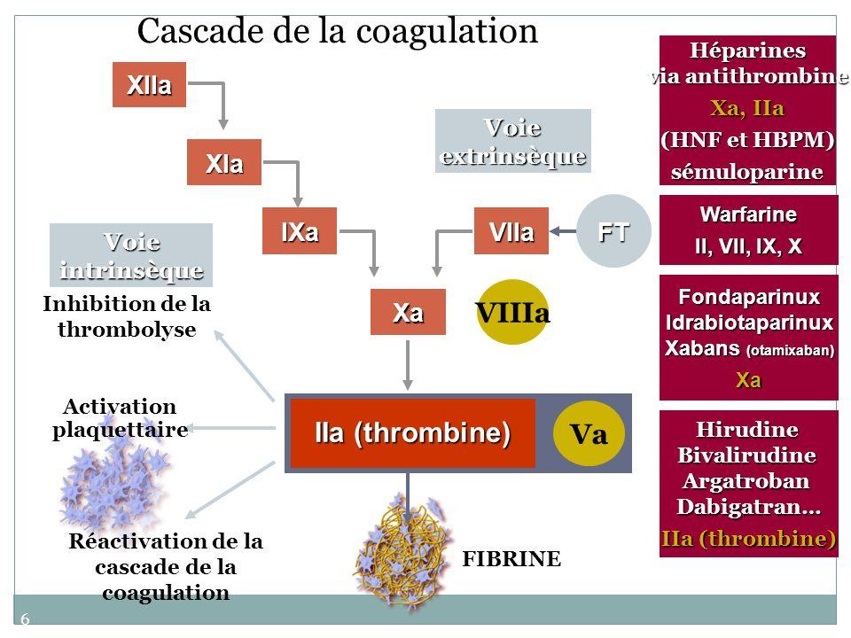 60 Cascade de la coagulation Voie intrinsèque Voie extrinsèque XIIa IIa (thrombine) Hirudine Bivalirudine Argatroban Dabigatran… IIa (thrombine) Hépar