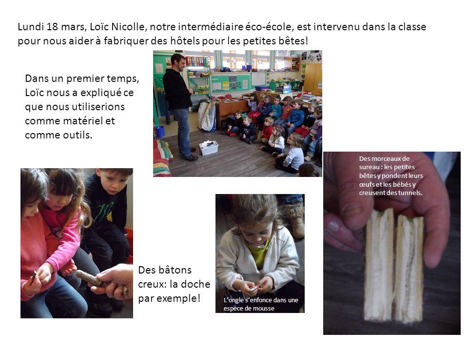 Lundi 18 mars, Loïc Nicolle, notre intermédiaire éco-école, est intervenu dans la classe pour nous aider à fabriquer des hôtels pour les petites bêtes