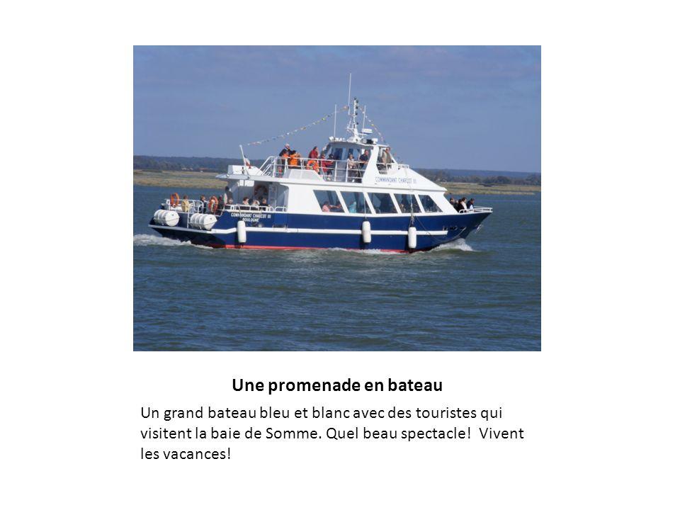 Une promenade en bateau Un grand bateau bleu et blanc avec des touristes qui visitent la baie de Somme. Quel beau spectacle! Vivent les vacances!