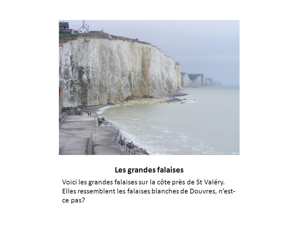 Les grandes falaises Voici les grandes falaises sur la côte près de St Valéry. Elles ressemblent les falaises blanches de Douvres, nest- ce pas?