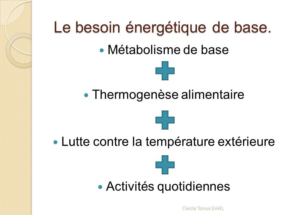 Le besoin énergétique de base. Métabolisme de base Cercle Tonus SARL Thermogenèse alimentaire Lutte contre la température extérieure Activités quotidi