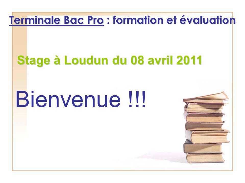 Terminale Bac Pro : formation et évaluation Stage à Loudun du 08 avril 2011 Bienvenue !!!
