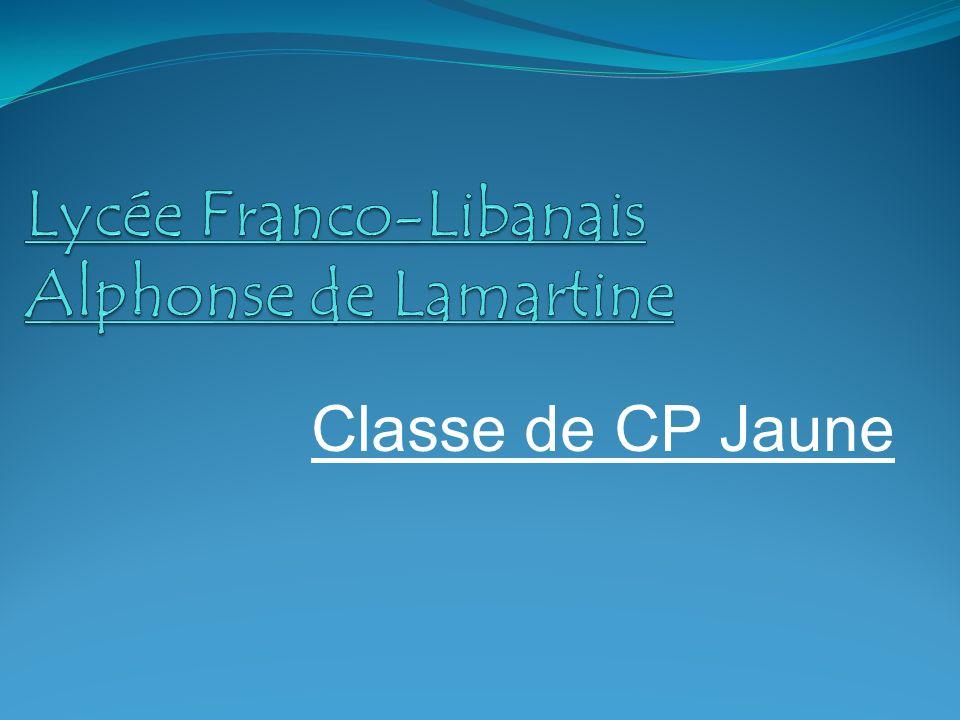Classe de CP Jaune