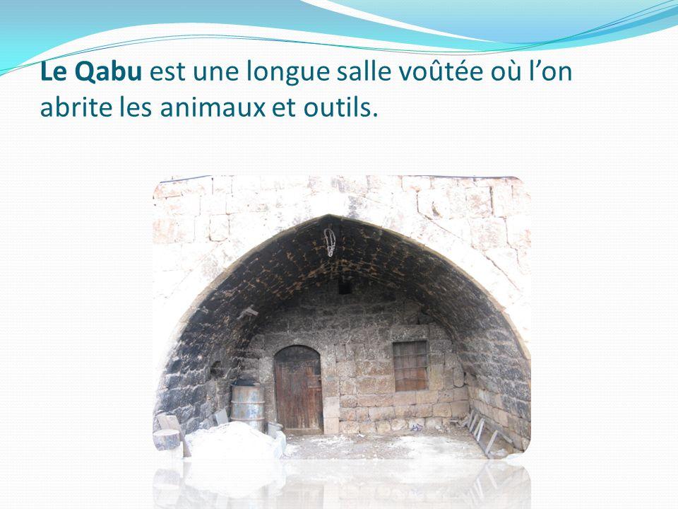 Le Qabu est une longue salle voûtée où lon abrite les animaux et outils.
