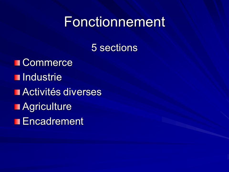 Fonctionnement 5 sections CommerceIndustrie Activités diverses AgricultureEncadrement