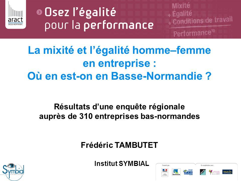 La mixité et légalité homme–femme en entreprise : Où en est-on en Basse-Normandie ? Résultats dune enquête régionale auprès de 310 entreprises bas-nor