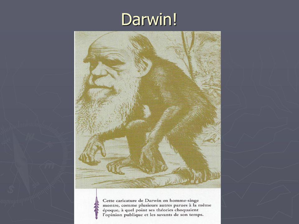 Darwin!