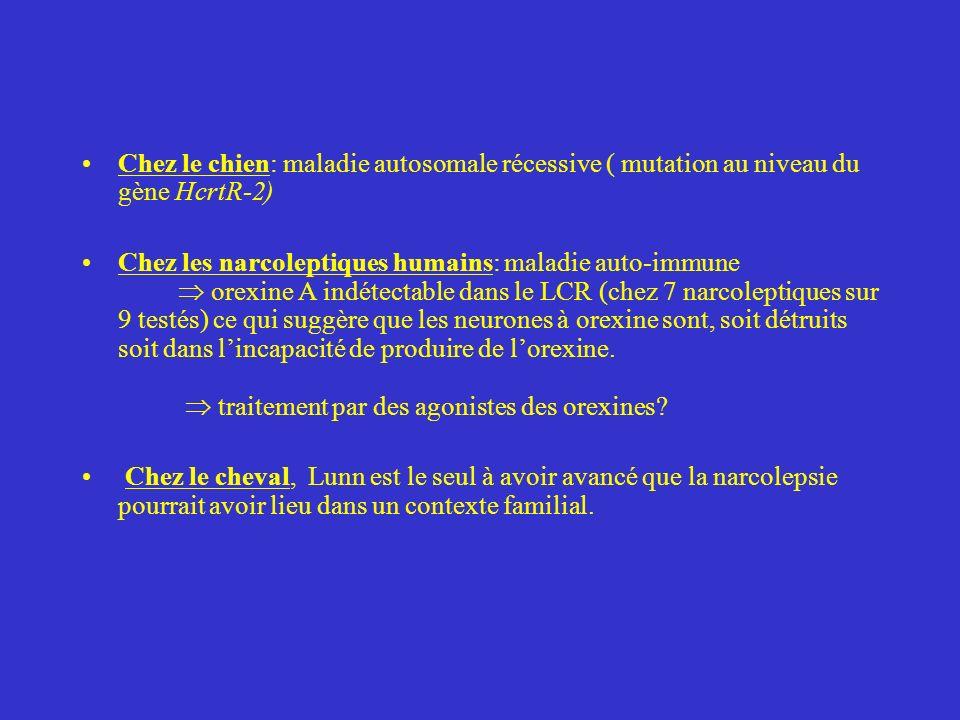 Chez le chien: maladie autosomale récessive ( mutation au niveau du gène HcrtR-2) Chez les narcoleptiques humains: maladie auto-immune orexine A indét