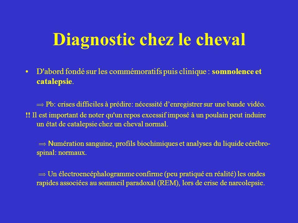 Test pharmacologique spécifique: - Administration intraveineuse de salicylate de physostigmine, une substance anti-cholinergique provoque une crise de catalepsie chez les chevaux atteint de narcolepsie.