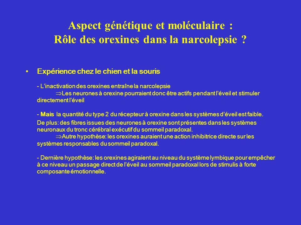 Chez le chien: maladie autosomale récessive ( mutation au niveau du gène HcrtR-2) Chez les narcoleptiques humains: maladie auto-immune orexine A indétectable dans le LCR (chez 7 narcoleptiques sur 9 testés) ce qui suggère que les neurones à orexine sont, soit détruits soit dans lincapacité de produire de lorexine.