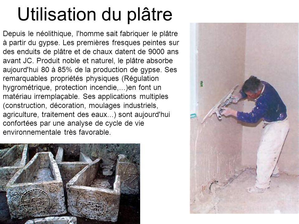 Depuis le néolithique, l'homme sait fabriquer le plâtre à partir du gypse. Les premières fresques peintes sur des enduits de plâtre et de chaux datent