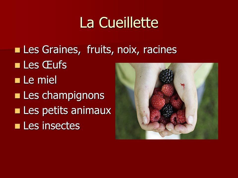 La Cueillette Les Graines, fruits, noix, racines Les Graines, fruits, noix, racines Les Œufs Les Œufs Le miel Le miel Les champignons Les champignons