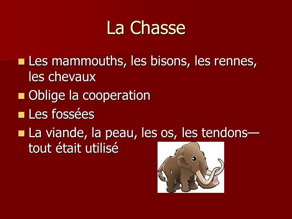 La Chasse Les mammouths, les bisons, les rennes, les chevaux Les mammouths, les bisons, les rennes, les chevaux Oblige la cooperation Oblige la cooper