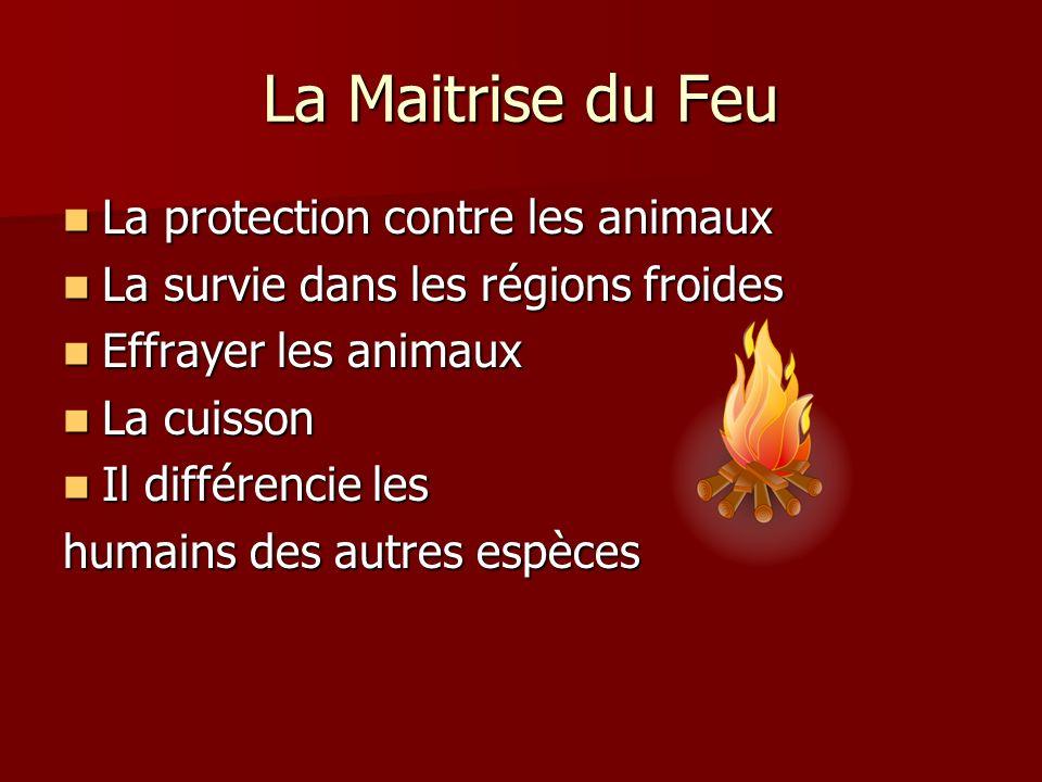 La Maitrise du Feu La protection contre les animaux La protection contre les animaux La survie dans les régions froides La survie dans les régions fro