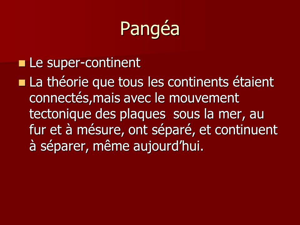 Pangéa Le super-continent Le super-continent La théorie que tous les continents étaient connectés,mais avec le mouvement tectonique des plaques sous la mer, au fur et à mésure, ont séparé, et continuent à séparer, même aujourdhui.