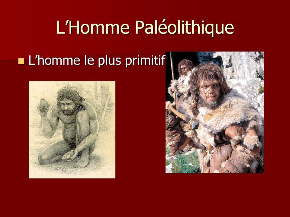 LHomme Paléolithique Lhomme le plus primitif Lhomme le plus primitif