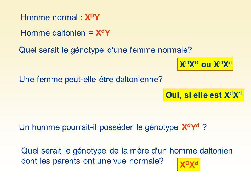 Quel serait le génotype d'une femme normale? Oui, si elle est X d X d Homme normal : X D Y Homme daltonien = X d Y X D X D ou X D X d Une femme peut-e