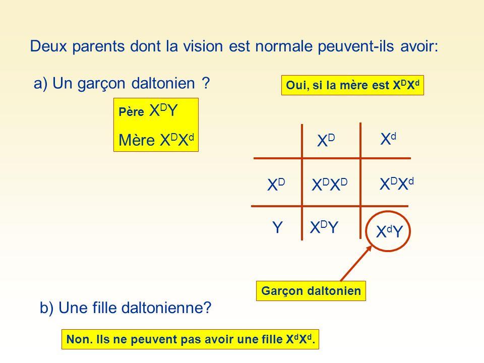 Deux parents dont la vision est normale peuvent-ils avoir: a) Un garçon daltonien ? Oui, si la mère est X D X d XDYXDY XDXdXDXd XDXDXDXD XDXD XdXd XDX
