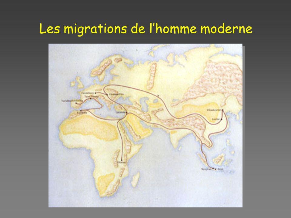 Les migrations de lhomme moderne