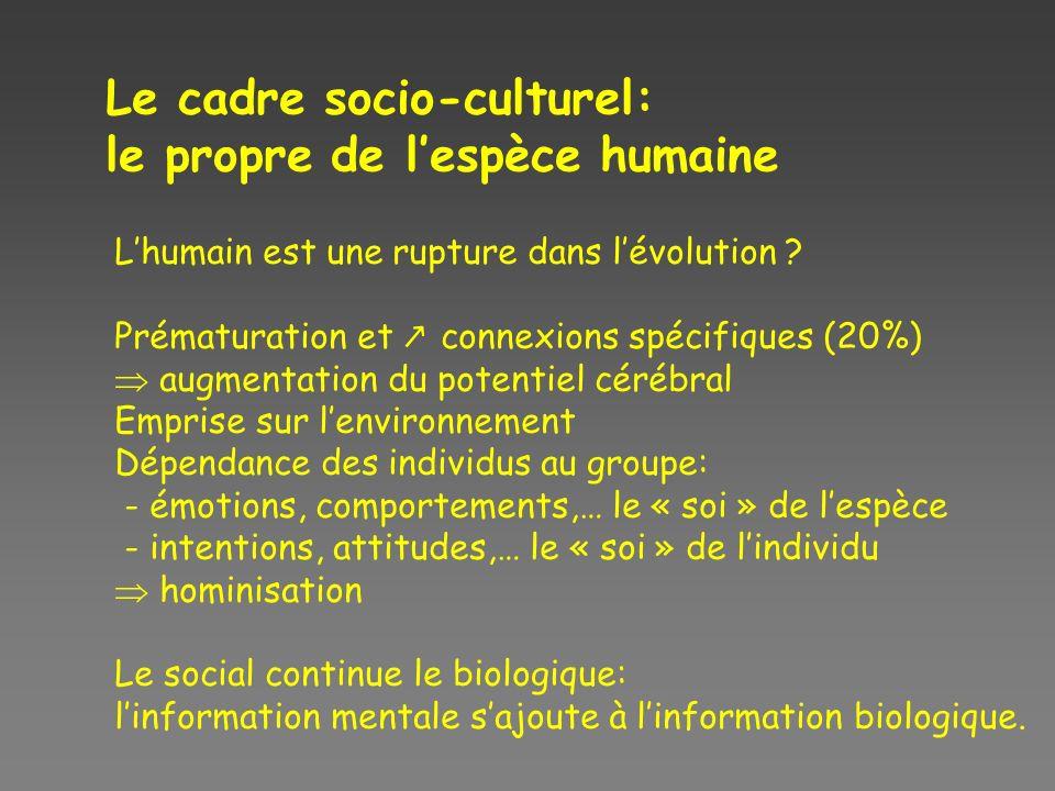 Le cadre socio-culturel: le propre de lespèce humaine Lhumain est une rupture dans lévolution .