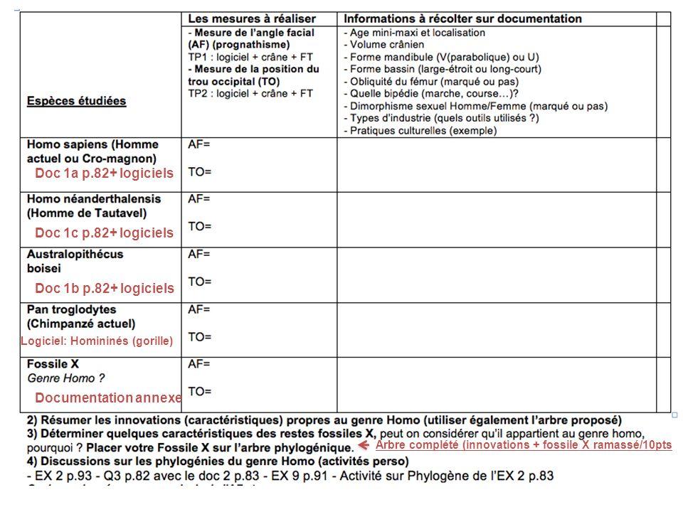 Doc 1a p.82+ logiciels Doc 1c p.82+ logiciels Doc 1b p.82+ logiciels Logiciel: Homininés (gorille) Documentation annexe Arbre complété (innovations +