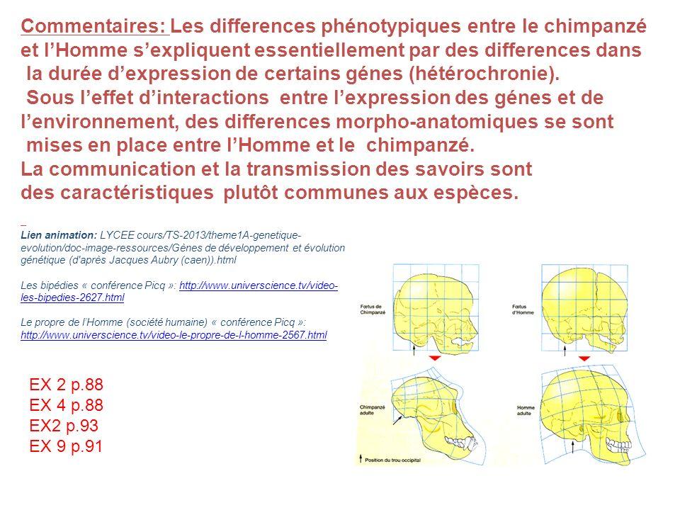 Commentaires: Les differences phénotypiques entre le chimpanzé et lHomme sexpliquent essentiellement par des differences dans la durée dexpression de