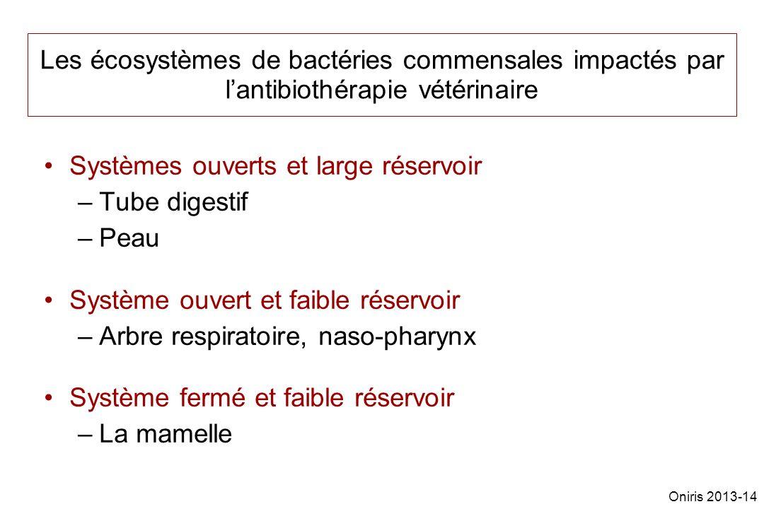 Les écosystèmes de bactéries commensales impactés par lantibiothérapie vétérinaire Systèmes ouverts et large réservoir –Tube digestif –Peau Système ouvert et faible réservoir –Arbre respiratoire, naso-pharynx Système fermé et faible réservoir –La mamelle Oniris 2013-14