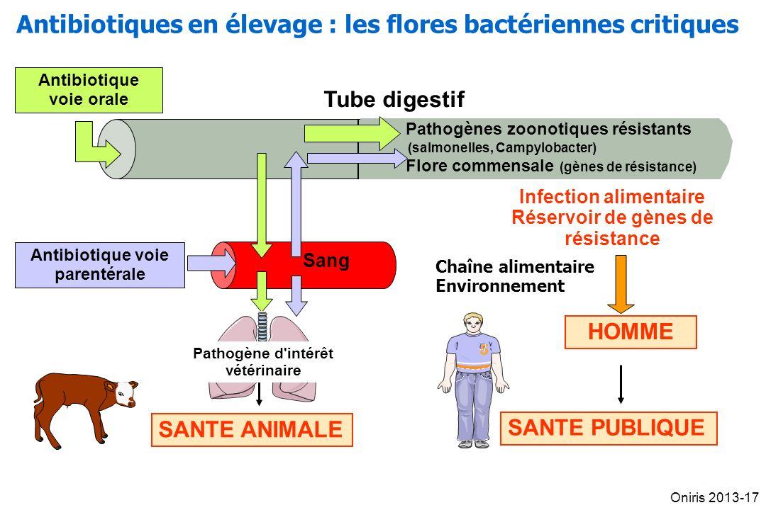 Tube digestif Sang Antibiotique voie orale SANTE ANIMALE Pathogène d intérêt vétérinaire Antibiotique voie parentérale Pathogènes zoonotiques résistants (salmonelles, Campylobacter) Flore commensale (gènes de résistance) Infection alimentaire Réservoir de gènes de résistance SANTE PUBLIQUE HOMME 55 Chaîne alimentaire Environnement Antibiotiques en élevage : les flores bactériennes critiques Oniris 2013-17