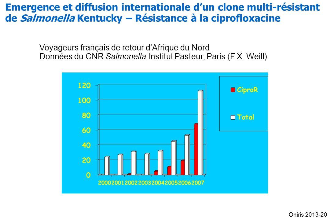 Voyageurs français de retour dAfrique du Nord Données du CNR Salmonella Institut Pasteur, Paris (F.X.