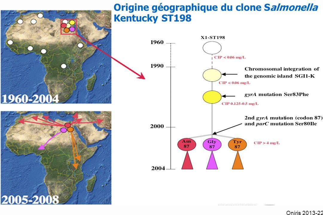 Origine géographique du clone Salmonella Kentucky ST198 Oniris 2013-22