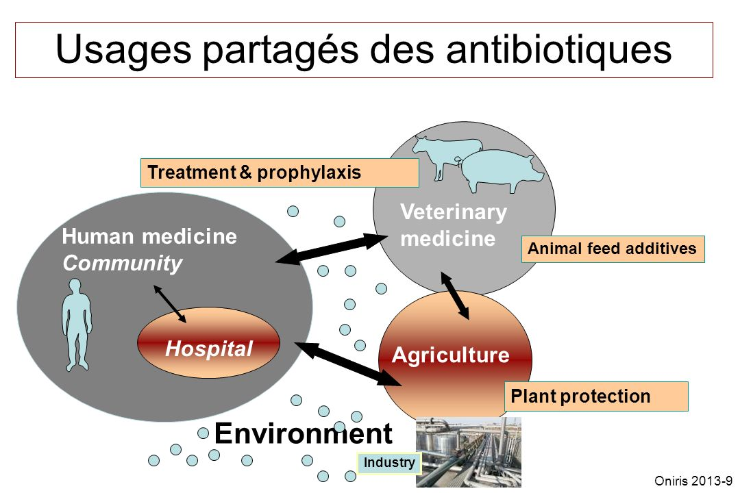 Usages partagés des antibiotiques Treatment & prophylaxis Human medicine Community Veterinary medicine Animal feed additives Environment Hospital Agri