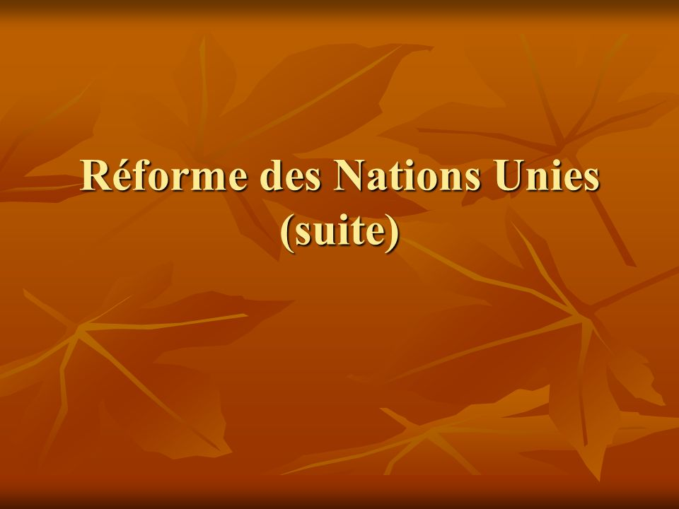 Réforme des Nations Unies (suite)