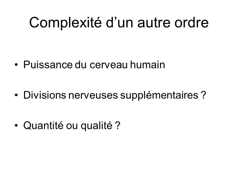 Complexité dun autre ordre Puissance du cerveau humain Divisions nerveuses supplémentaires .
