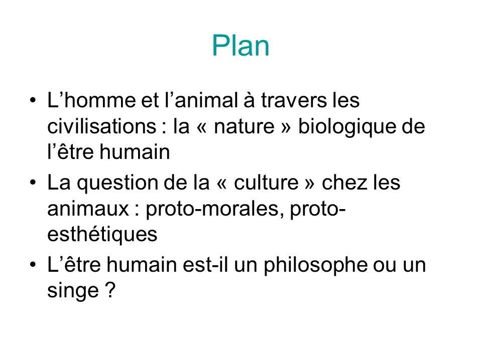 Plan Lhomme et lanimal à travers les civilisations : la « nature » biologique de lêtre humain La question de la « culture » chez les animaux : proto-morales, proto- esthétiques Lêtre humain est-il un philosophe ou un singe ?