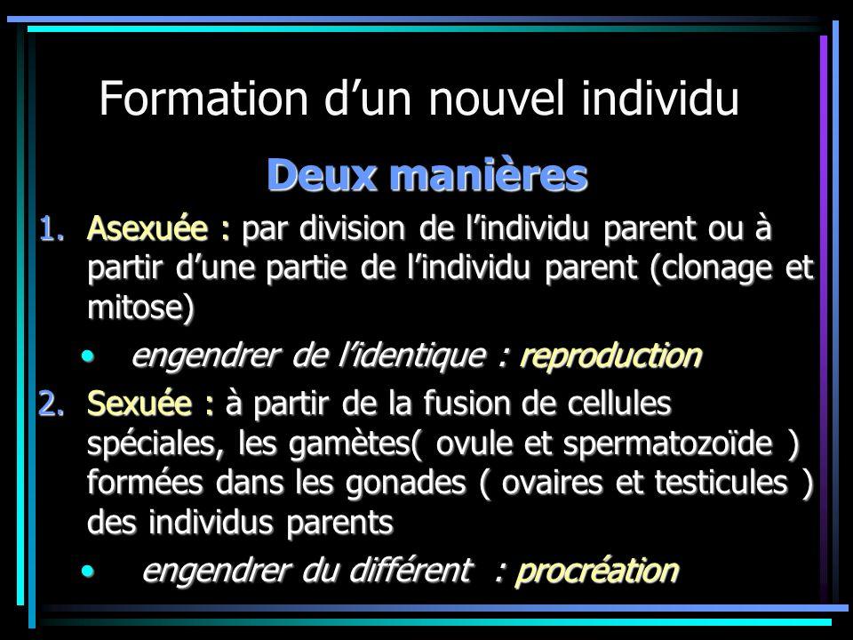 Formation dun nouvel individu Deux manières 1.Asexuée : par division de lindividu parent ou à partir dune partie de lindividu parent (clonage et mitos