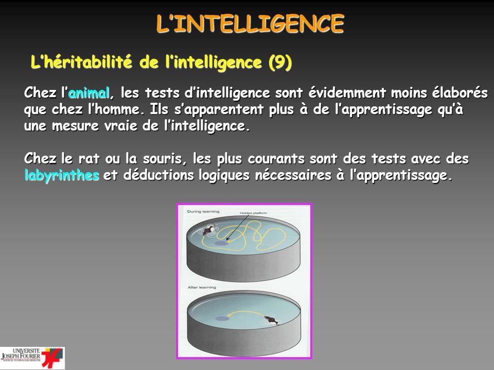 LINTELLIGENCE LINTELLIGENCE Lhéritabilité de lintelligence (10) Chez lanimal, lhérédité a aussi une influence sur leur capacité à trouver une solution à un problème.