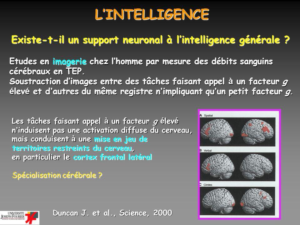 LINTELLIGENCE LINTELLIGENCE Existe-t-il un support neuronal à lintelligence générale ? Etudes en imagerie chez lhomme par mesure des débits sanguins c