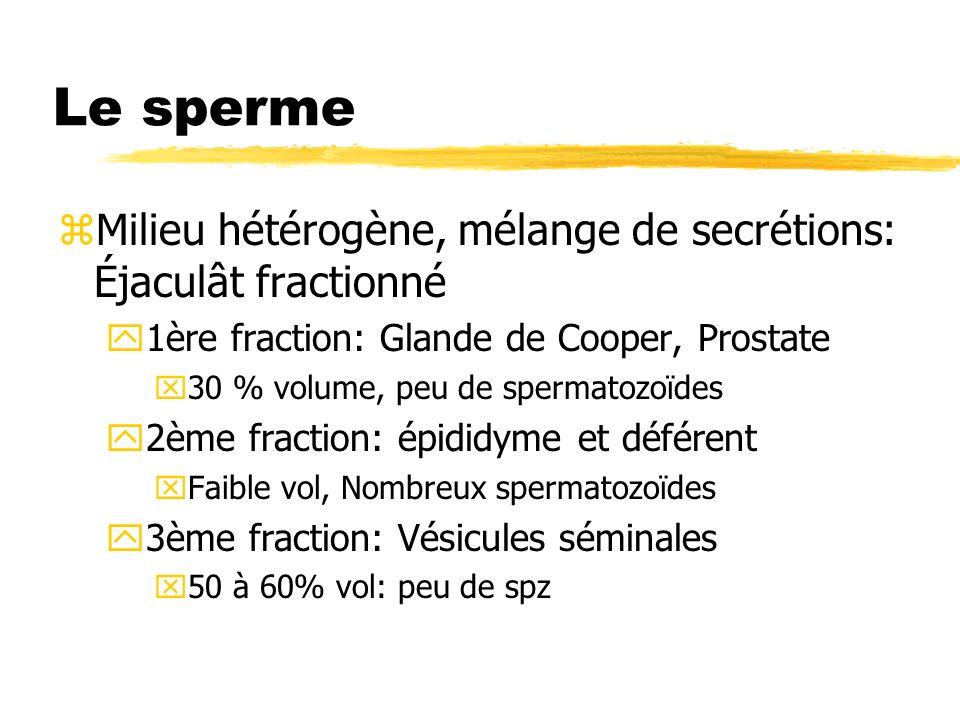 Le sperme zMilieu hétérogène, mélange de secrétions: Éjaculât fractionné y1ère fraction: Glande de Cooper, Prostate x30 % volume, peu de spermatozoïde