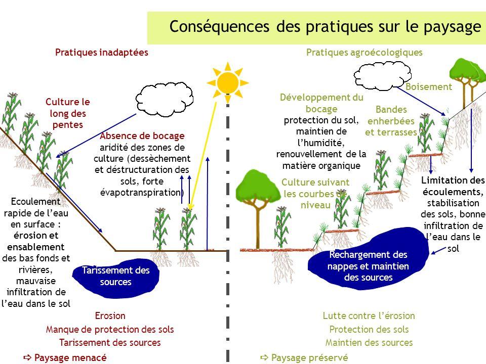 Conséquences des pratiques sur le paysage Pratiques inadaptéesPratiques agroécologiques Boisement Bandes enherbées et terrasses Culture suivant les co
