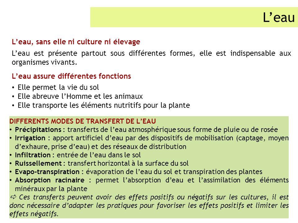 Leau Leau, sans elle ni culture ni élevage Leau est présente partout sous différentes formes, elle est indispensable aux organismes vivants. Leau assu