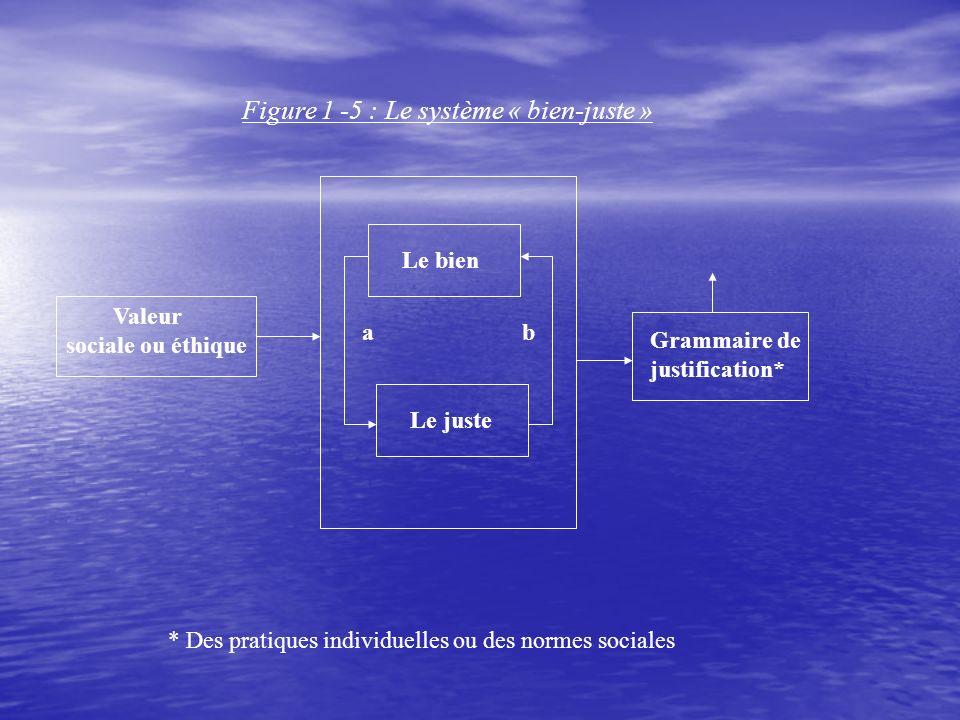 Figure 1 -5 : Le système « bien-juste » Valeur sociale ou éthique Le bien Le juste a b Grammaire de justification* * Des pratiques individuelles ou des normes sociales