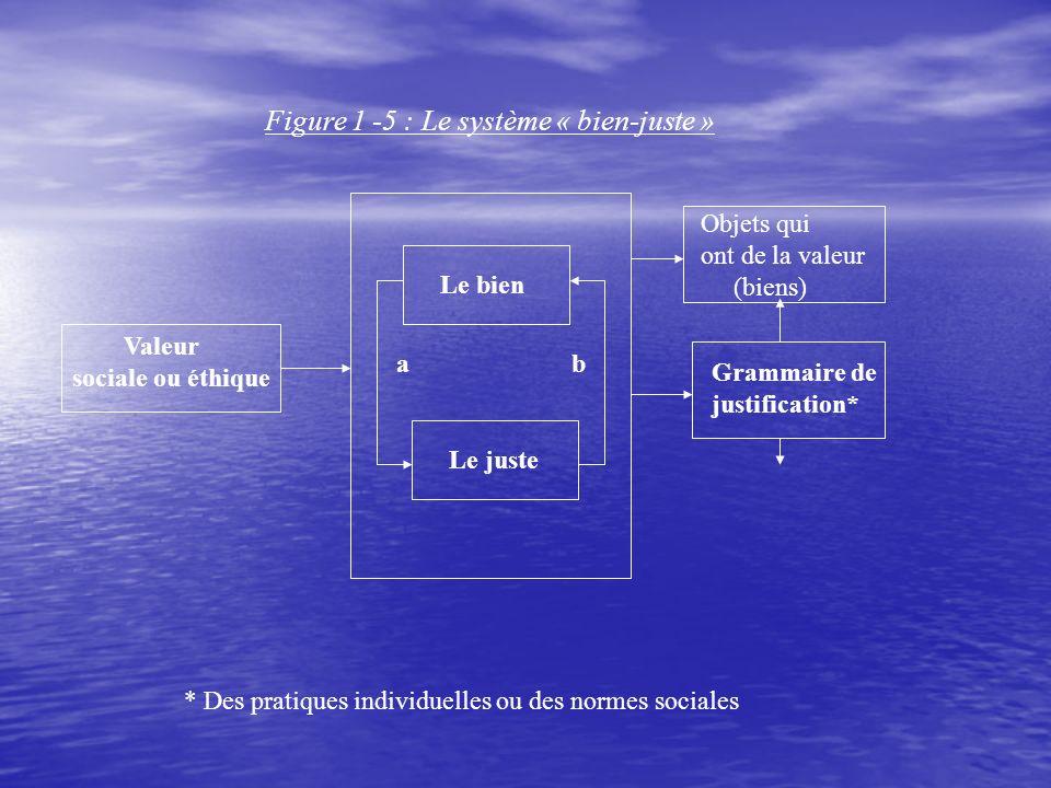 Figure 1 -5 : Le système « bien-juste » Valeur sociale ou éthique Le bien Le juste a b Objets qui ont de la valeur (biens) Grammaire de justification* * Des pratiques individuelles ou des normes sociales