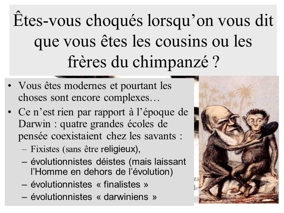 Êtes-vous choqués lorsquon vous dit que vous êtes les cousins ou les frères du chimpanzé ? Vous êtes modernes et pourtant les choses sont encore compl